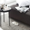 Daybe_bed_closeup_with_Stilk - Northern_Photo_Chris_ Tonnesen - Low res
