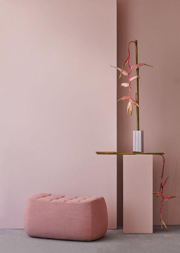 Yam_medium_pink - Northern_photo_Chris_Tonnesen - Low res