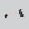 Birdy_wall_lamp_black_brass_Northern