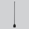 Northern_Mim_broom_black