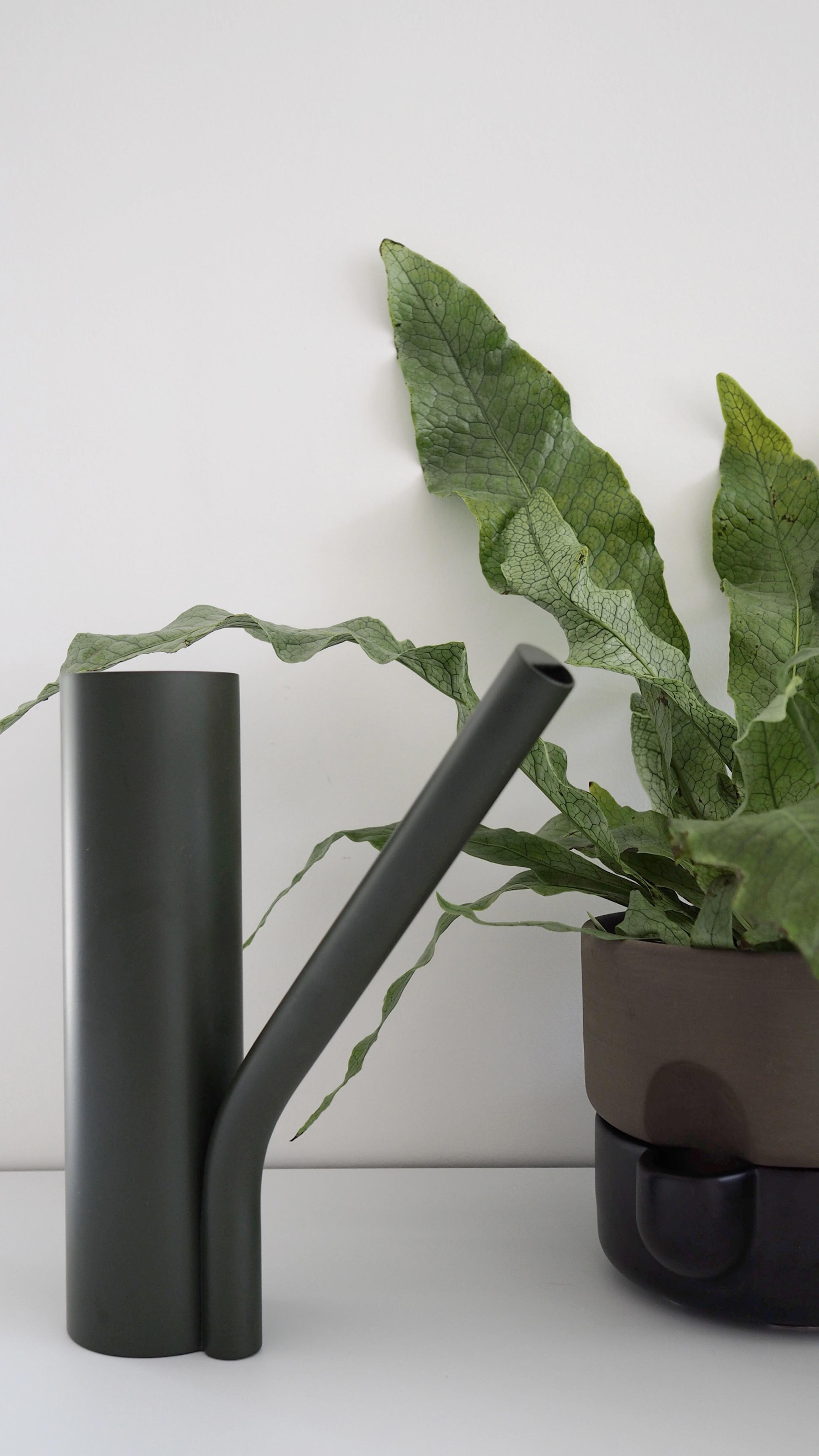 Northern_Oasis_self-watering_flowerpot_Grab_Holiday-Care-for-Houseplants_Nicola_Capper.jpg
